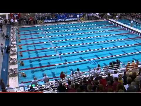 2014 Womens SEC Swimming and Diving Saturday Finals
