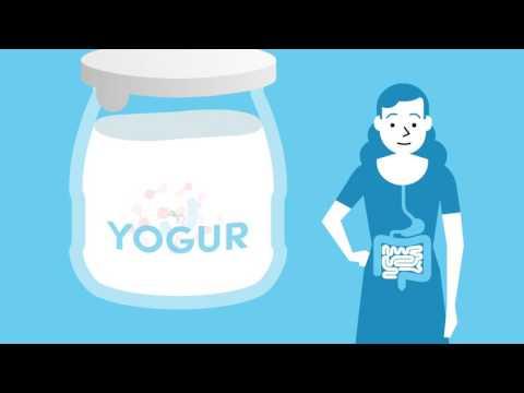 Yogur, beneficios de este lácteo rico en nutrientes 1