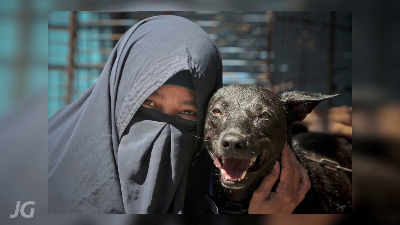 In the Name of Love: Story of a Muslim Dog Lover