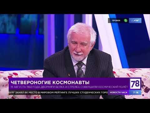 """""""Полезное утро"""" о полете Белки и Стрелки"""