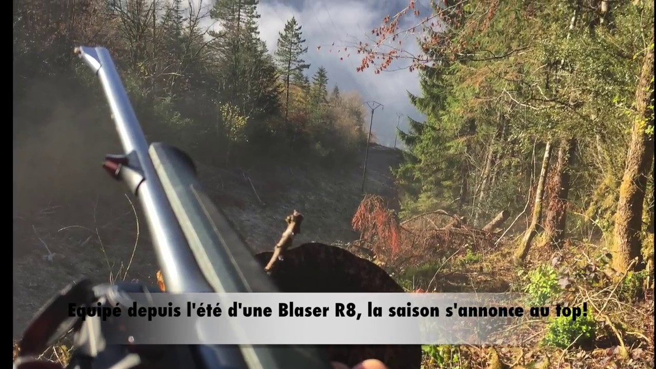 Battues aux grands gibiers, Blaser R8