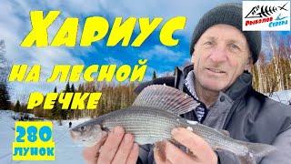 Рыбалка на хариуса зимой 2021 Хариус на таёжной речке Рыбалка на хариуса в глубинке Арх области