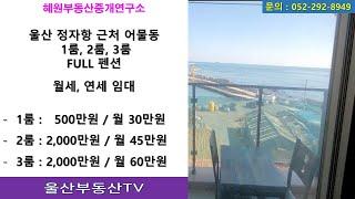 [울산부동산TV]울산 정자항 근처 펜션,세컨하우스,별장…