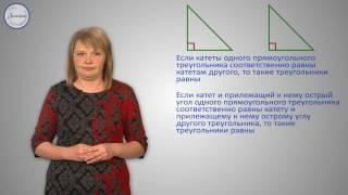 Геометрия 7 Прямоугольные треугольники