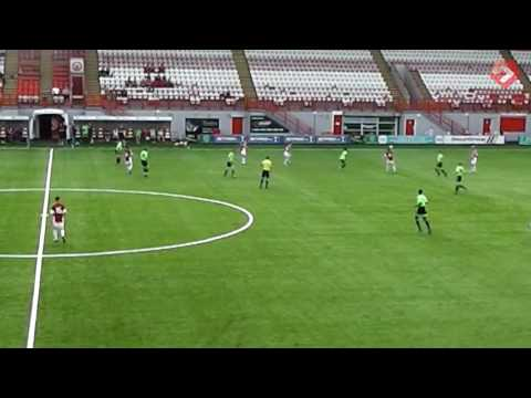Hamilton v Blades Development - goals