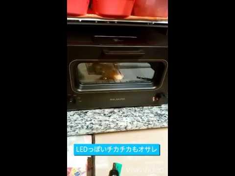 Stovetop toaster bruschetta maker