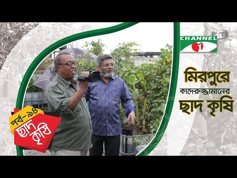 Rooftop farming | EPISODE 94 | HD | Shykh Seraj | Channel i | Roof Gardening | ছাদকৃষি |