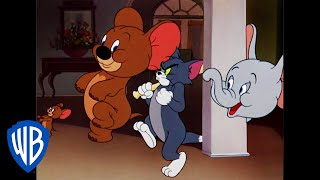 Download Tom and Jerry Cartoon - Tom and Jerry | Jerry and Jumbo Team Up | Classic Cartoon | WB Kids