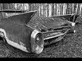 Landscape Photography: Rusty Antique Cars in the Forest