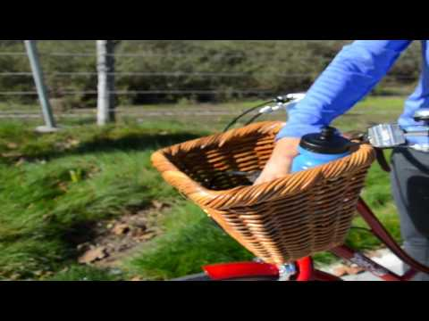 Quick Refreshing Water Detox Drink For Biking Kiwi Orange or Lemon Ginger