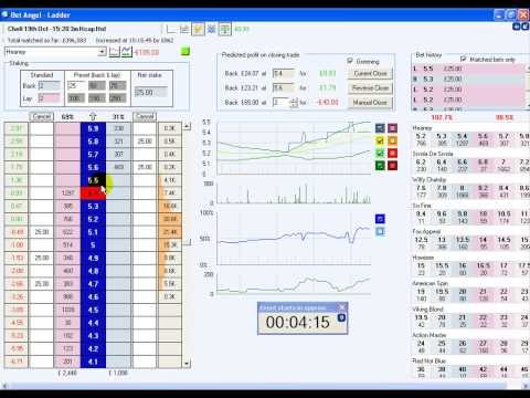 Betfair exchange games trading system