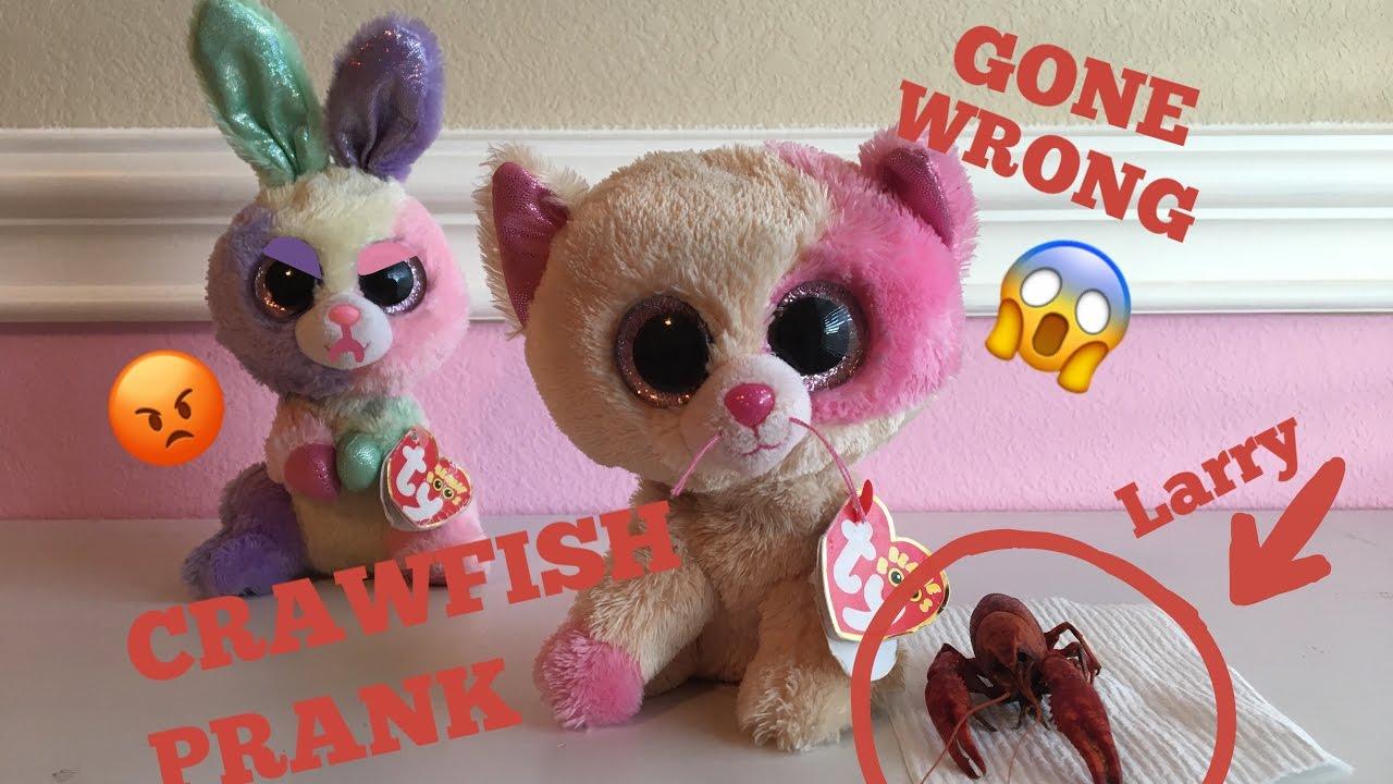 7f74f4efade Beanie Boo s  CRAWFISH PRANK GONE WRONG! - YouTube