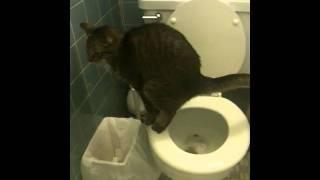 Hades pooping in toilet