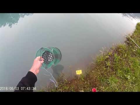 concours grosses truites pisciculture lac de varend 3 06 2018