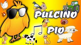 Il Pulcino Pio Filastrocche e Canzoni per bambini.mp3