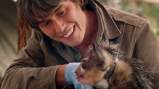 Brian Cox Meets An Aye-Aye - Wonders Of Life - BBC