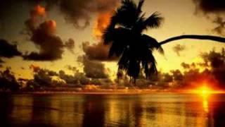 [7.46 MB] Paul van dyk - Let go (Paul van dyk Club Mix)