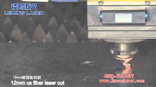 12mm carbon steel  fiber laser cutter -LEIMING