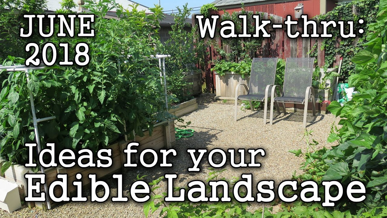 2018 June Urban Garden Edible Landscaping Tour Plant Book