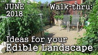 2018 June Urban Garden / Edible Landscaping Tour + Plant & Book Ideas (Albopepper Walk-thru)