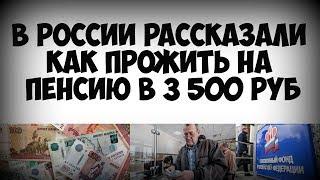 В России рассказали как прожить на пенсию в 3 500 рублей