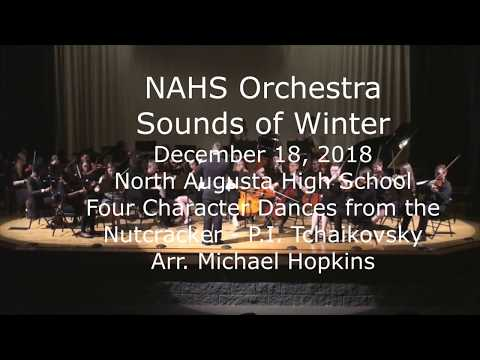 North Augusta High School Orchestra Sounds of Winter Concert - December 18, 2018
