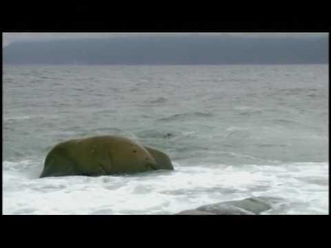 Visions of Canada - Season 1 - Episode 1 - The Atlantic Coast