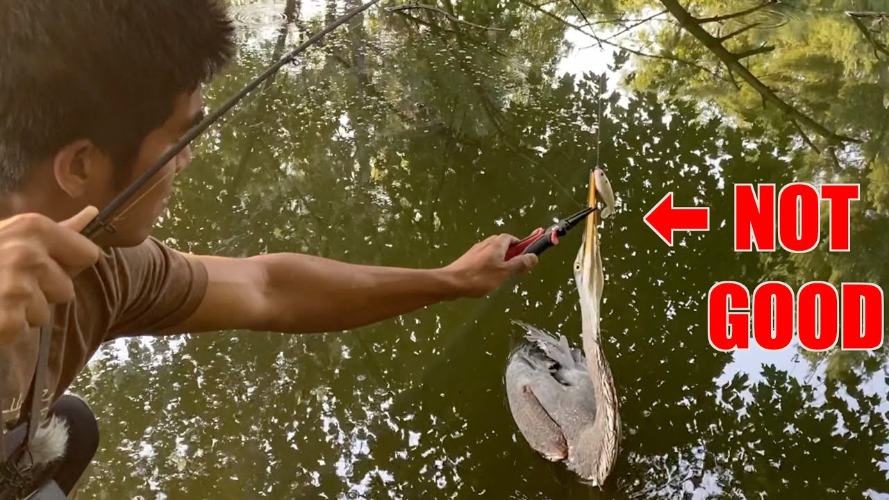 I CAN'T BELIEVE I CAUGHT THIS WHILE FISHING!!! (ft. A VERY Famous YouTuber)