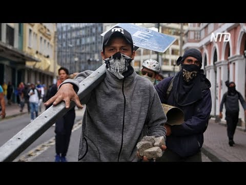 В Эквадоре продолжаются протесты из-за подорожания топлива