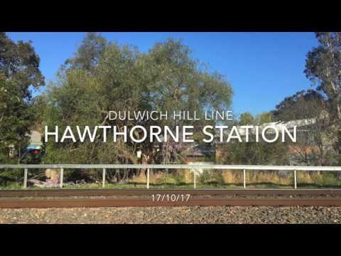 Sydney Light Rail services @ Hawthorne station - 10/10/17 - READ DESC.