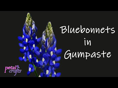 Making a Gumpaste Blue Bonnet by Petal Crafts