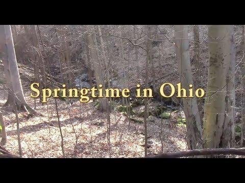 Springtime in Ohio