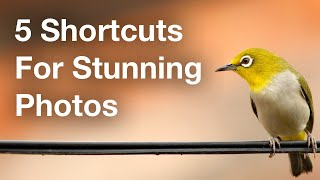 5 Shortcuts To Take Your Photos To The Next Level