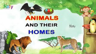 Animals and Their Home Names For Kids In English | Animal Homes || Homes of Animals and Birds
