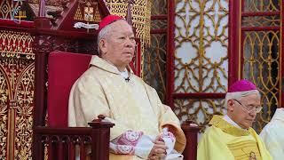 Đức Hồng Y Phêrô NGUYỄN VĂN NHƠN dâng lễ tạ ơn kết thúc sứ vụ mục tử
