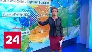 """""""Погода 24"""": в Санкт-Петербурге выпал снег - Россия 24"""