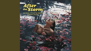 Cover images After The Storm
