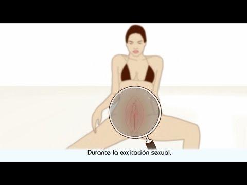 El orgasmo - descripción del orgasmo femenino