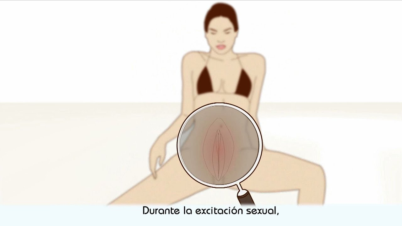 El proceso del orgasmo femenino Escorts 2000