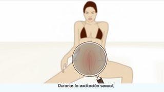 El orgasmo - descripción del orgasmo femenino thumbnail