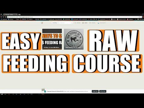 Raw Feeding 101 - Learn To Feed Raw 2.0 | Easy Raw Feeding Guide