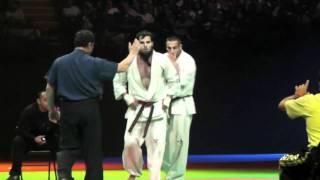 European Open Karate Championship Paris-Bercy 2011/Final