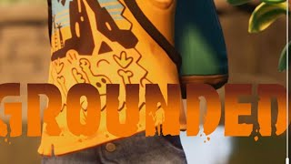 Grounded review