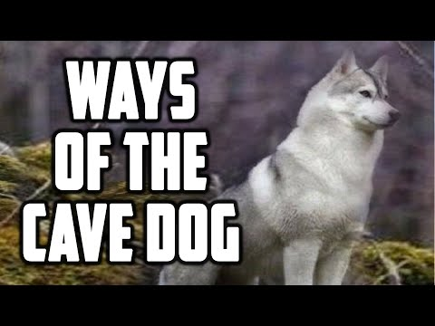 Qitmir Cave Guard Dog Lesson of Ahsab Kahf Surah 18 PROTECTION AGAINST DAJJAL Sufi Meditation