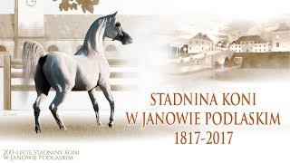 STADNINA KONI W JANOWIE PODLASKIM 1817-2017