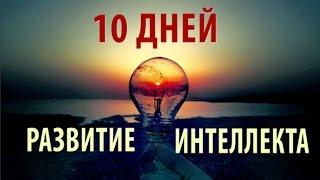 Как Развить Интеллект За 10 Дней?!