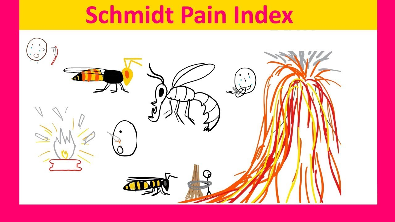Schmidt Pain Index: Bees Wasps Ants And Their Stings ...