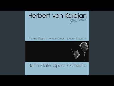 Symphony No.9, In E Minor, Op. 95 : I. Adagio - Allegro Molto