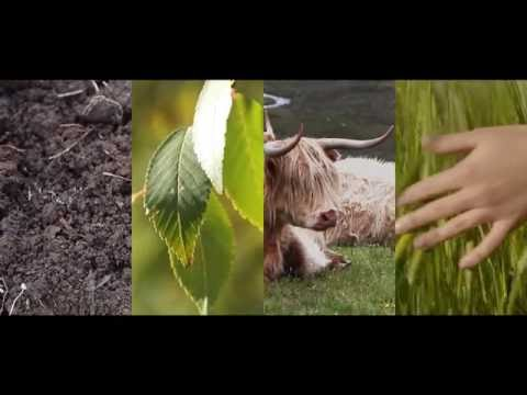 Principles of Organic Agriculture
