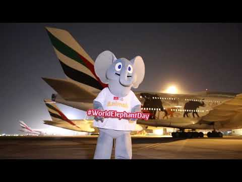 World Elephant Day | Emirates Airline